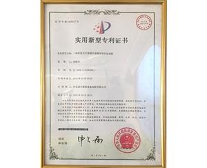 实用新型专利证书 (11)